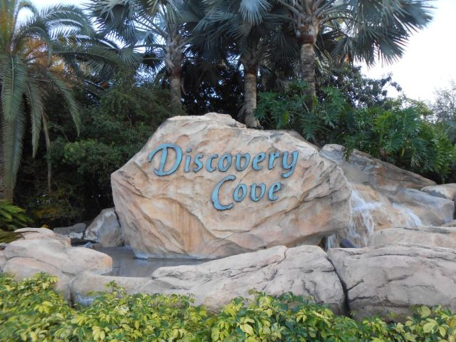 1Discovery Cove 1