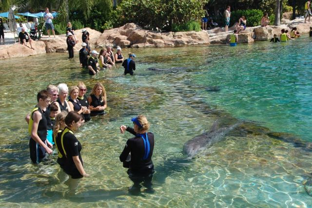 1Discovery Cove 102