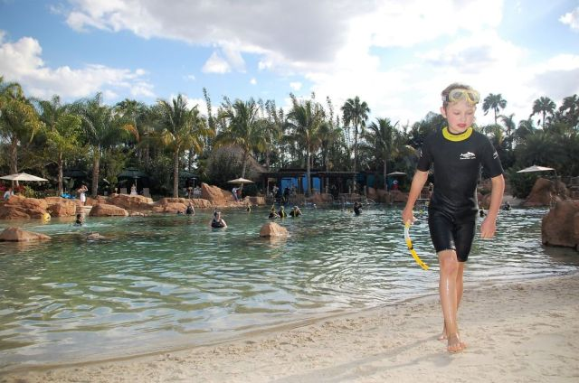 1Discovery Cove 241
