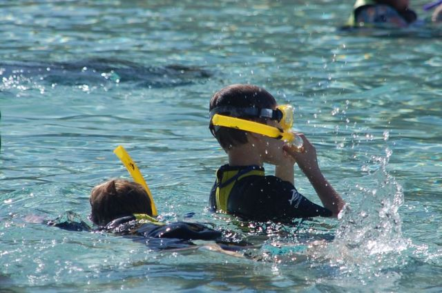 1Discovery Cove 55