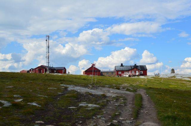 3Blåhammaren