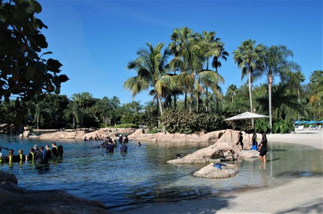 1Discovery Cove 16