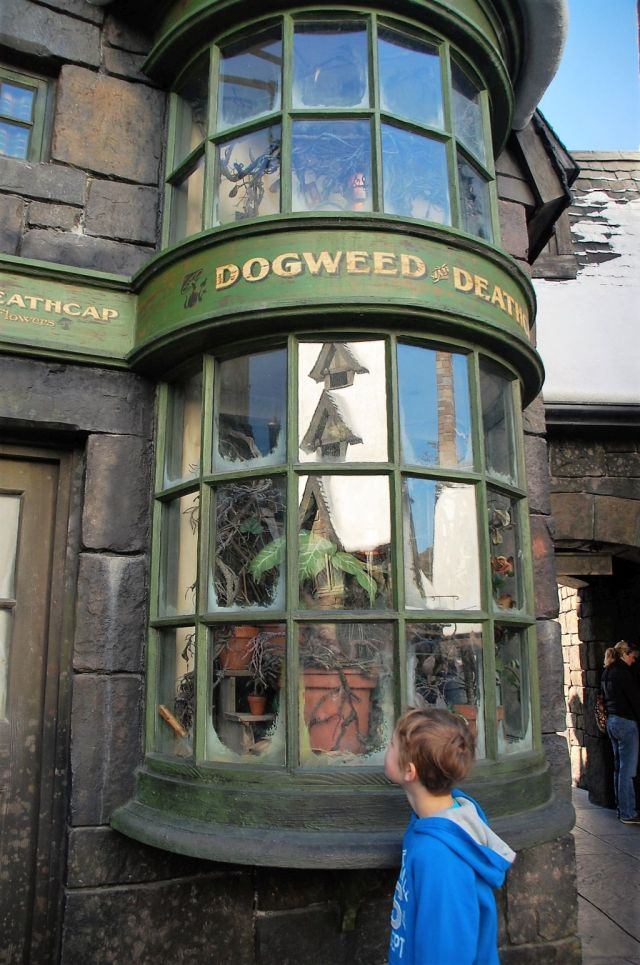2Harry Potter 8