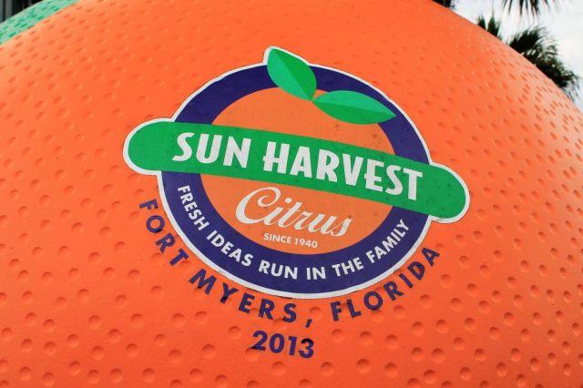 5Sun Harvest