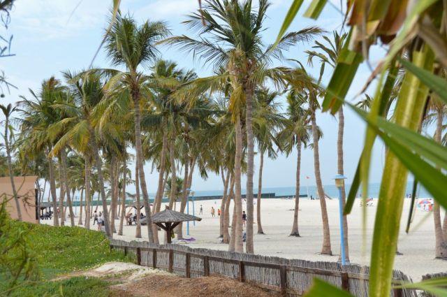 5Jumeirah Beach Park 5