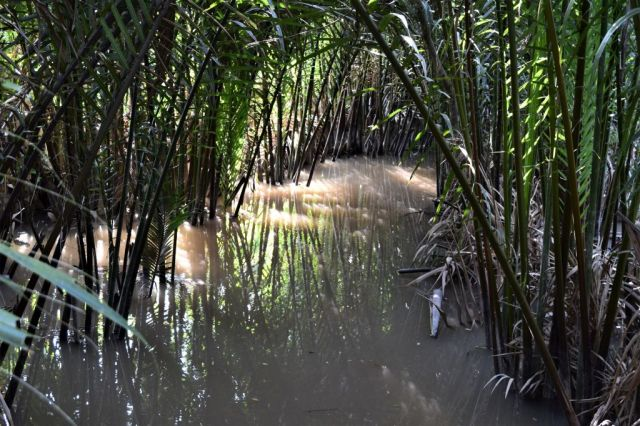 11Båttur Mekongfloden 5