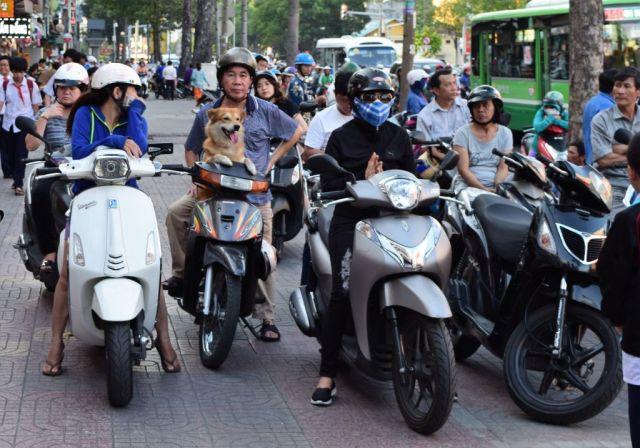 1Ho Chi Minh 27