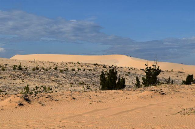 4Vita sanddyner 8