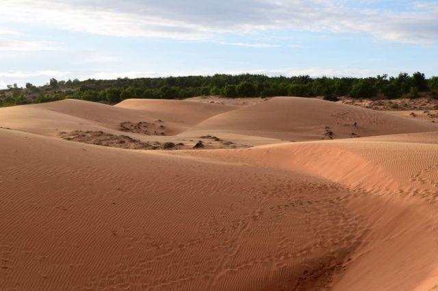 5Röda sanddyner 54