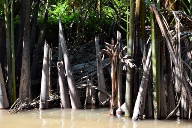 8Båttur Mekongfloden 40