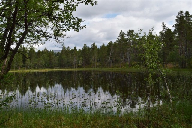 Stensdalen-Vålådalen 108