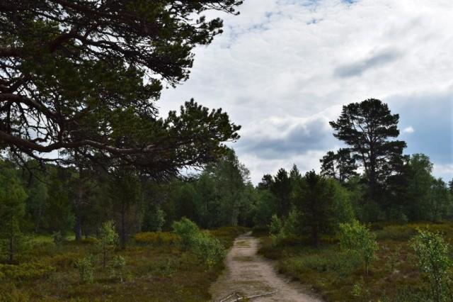 Stensdalen-Vålådalen 118