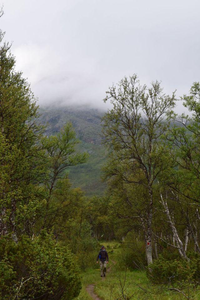 Stensdalen-Vålådalen 4