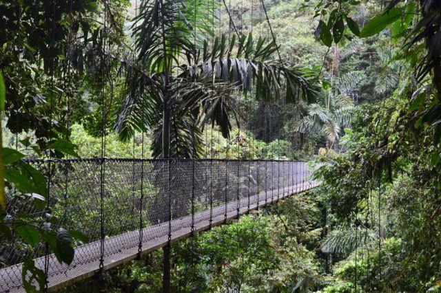 1Mistico Hanging Bridges 110
