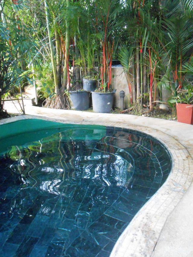 1Paradise Hot Springs 14