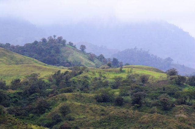 1Resa La Fortuna - Monteverde 33