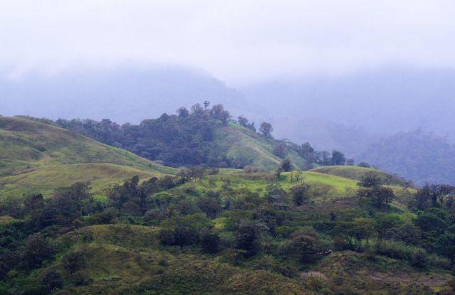 1Resa La Fortuna - Monteverde 40