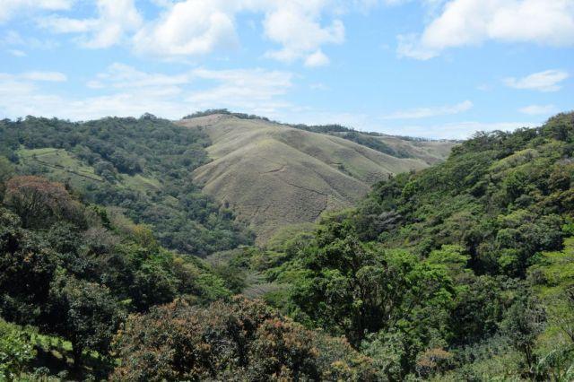 1Resa La Fortuna - Monteverde 52