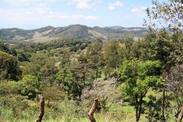 1Resa La Fortuna - Monteverde 55