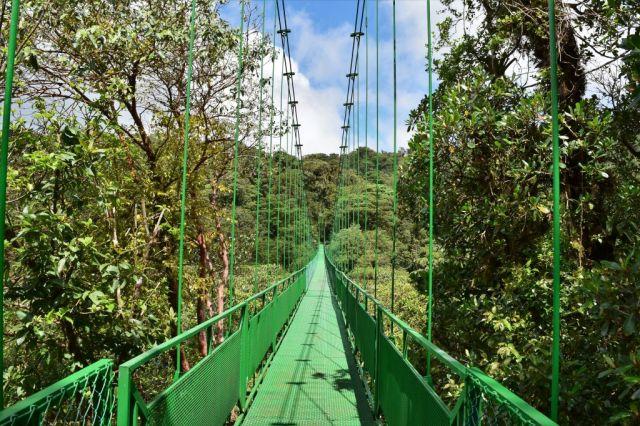 4Hanging Bridges 99