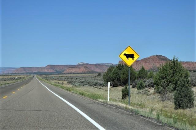 1Resa Page - Bryce Canyon 18