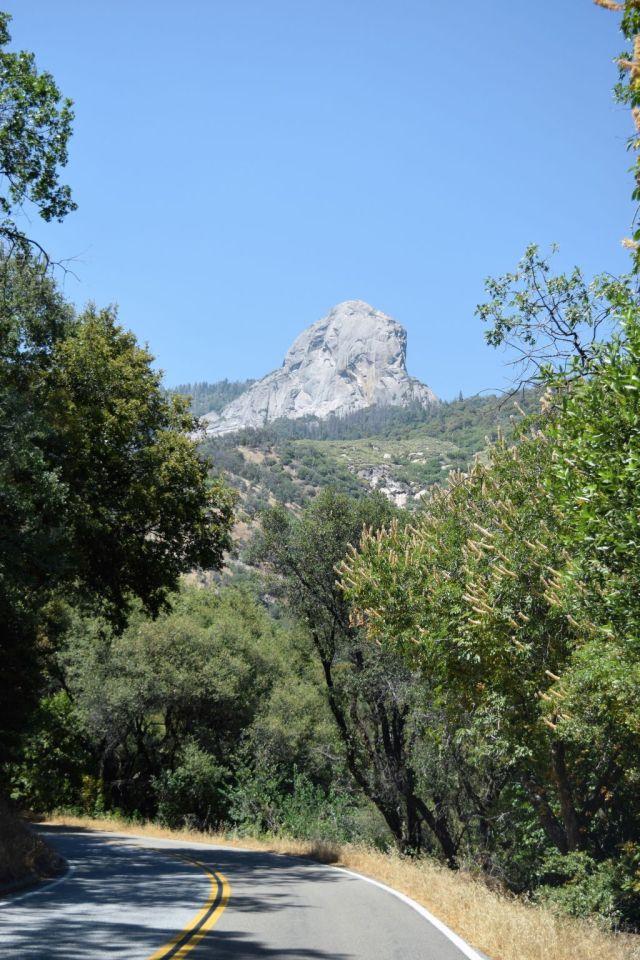 1Sequoia National Park 9