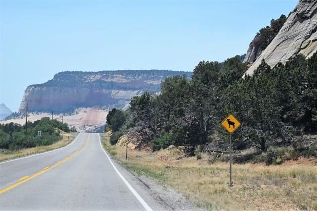 3Resa Bryce Canyon - Zion 7