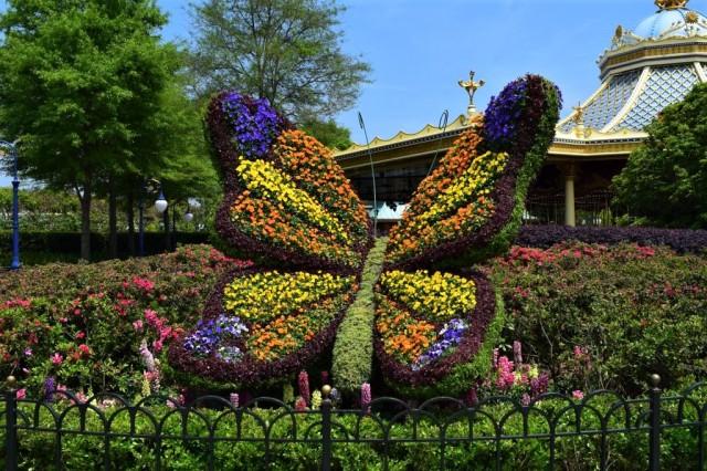 Disneyland Shanghai 190