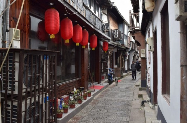 Zhujiajiao 18