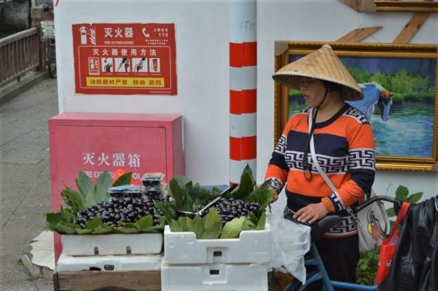 Zhujiajiao 20