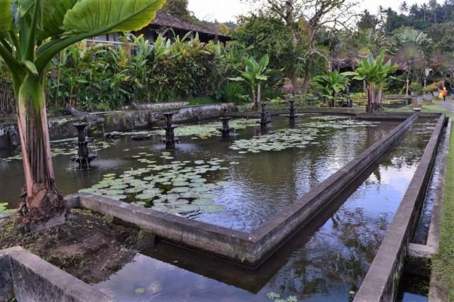 2Tirta Ganga Water Palace 59