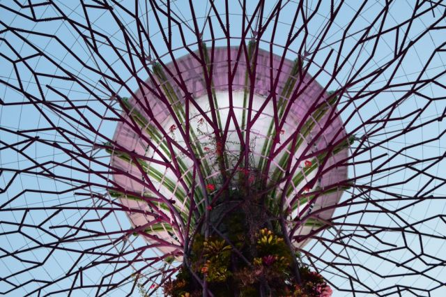 Gardens by the Bay 122