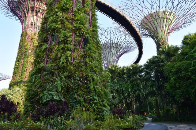 Gardens by the Bay 17