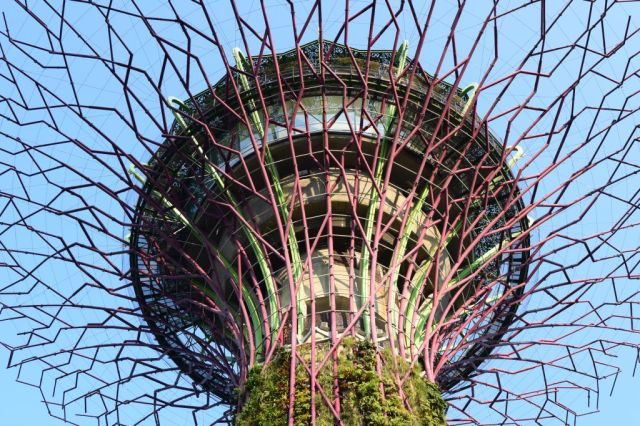 Gardens by the Bay 20