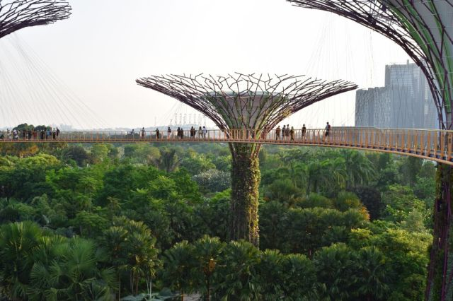 Gardens by the Bay 54