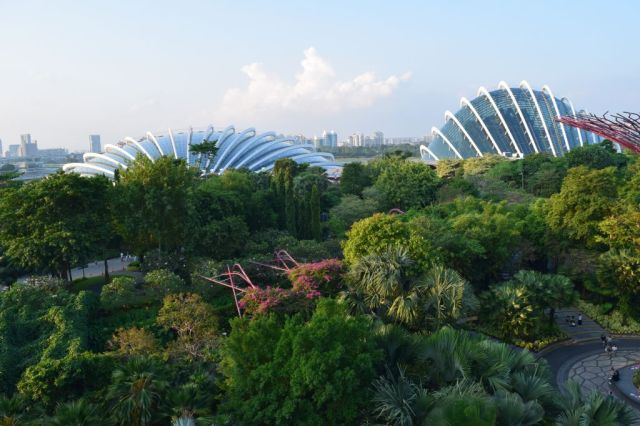 Gardens by the Bay 57