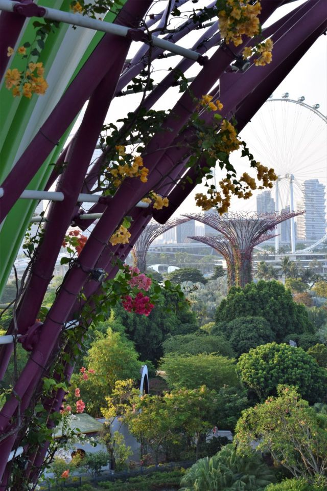 Gardens by the Bay 71