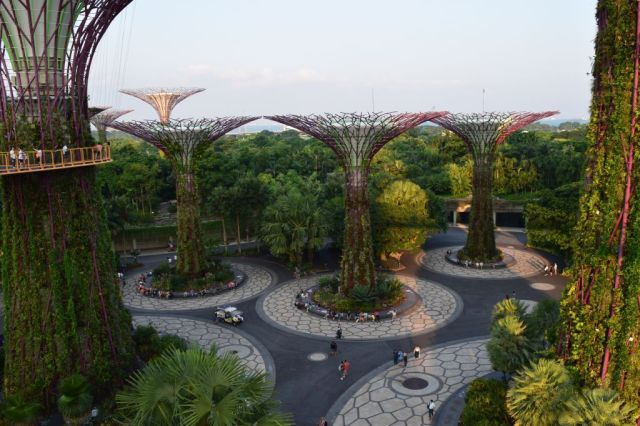 Gardens by the Bay 83