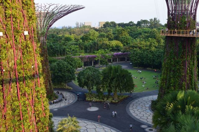 Gardens by the Bay 88