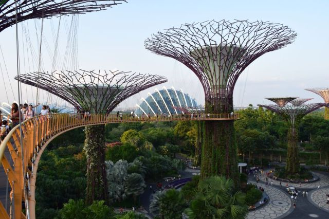 Gardens by the Bay 95