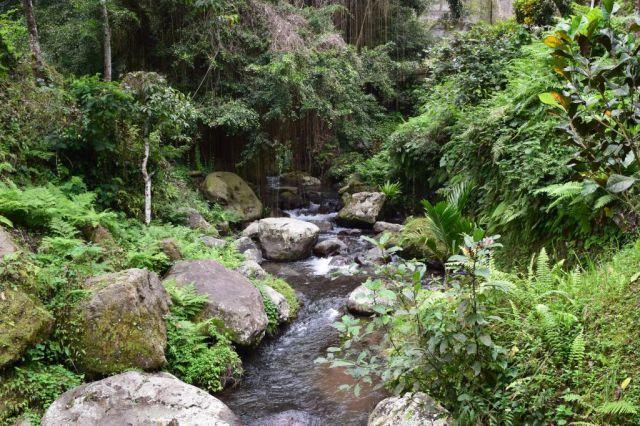 Gunung Kawi 27